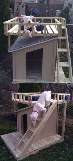 The guy who built a deck for his dog's house. I need this!