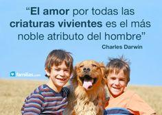 El amor por todas las criaturas vivientes es el más noble atributo del hombre ¡Buenas noches!