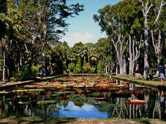 Pamplemousses Garden