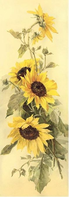 Painting sunflower acrylic 17 Ideas - Sites new Sunflower Drawing, Sunflower Art, Sunflower Paintings, Paintings Of Sunflowers, Painting Flowers, Watercolor Flowers, Watercolor Paintings, Watercolor Sunflower, Drawing Flowers