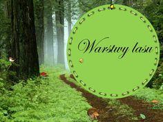 Warstwy lasu.  korony drzew.  podszyt.  runo.  ściółka.  Ściółka. Montessori, Stepping Stones, Presentation, Environment, Science, Education, Outdoor Decor, Nature, Flowers