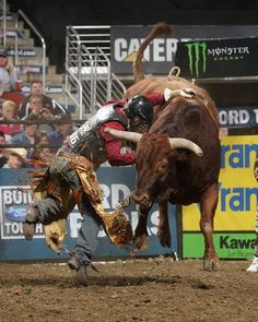 Photographing bull riding at night is soooo tricky!