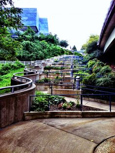 Chattanooga, TN, saw this path from above. Chattanooga Aquarium, Chattanooga Attractions, Tennessee Attractions, Downtown Chattanooga, Chattanooga Tennessee, Tennessee Usa, Tennessee Vacation, Great Places, Places To See