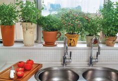 New Kitchen Window Sill Plants Garden Ideas Ideas Kitchen Herbs, Mini Kitchen, Kitchen Tips, Kitchen Decor, Kitchen Window Sill, Kitchen Windows, Comment Planter, Apartment Plants, Herb Pots