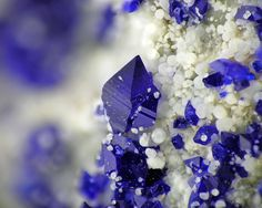 Azure-blue Callaghanite and white Hydromagnesite from Basic Refractories Mine, Gabbs District, Nye Co., Nevada, USA