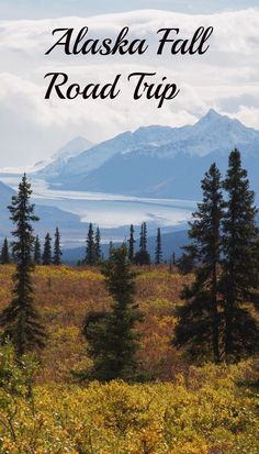 Take an Alaska Fall Road Trip with us. You'll discover beautiful autumn colors and no bugs!