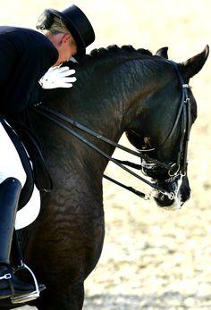 Anky van Grunsven and Salinero | Athens 2004 • Equestrian