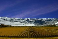 Turismo Argentina Mendoza
