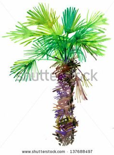 Palm Tree. watercolor painting. by olies, via ShutterStock