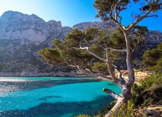 Calanque de Sormiou - MArseille France  Find Super Cheap International Flights to Marseile, France ✈✈✈ https://thedecisionmoment.com/cheap-flights-to-europe-france-marseille/
