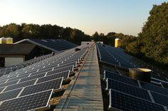 Odnawialne źródła energii – ekologia i oszczędność. Panele fotowoltaiczne, termodynamiczne pompy ciepła http://www.liderbudowlany.pl/artykul/452/odnawialne-zrodla-energii-ekologia-i-oszczednosc