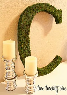 moss covered monogram.  would be cute for the holidays over the fireplace