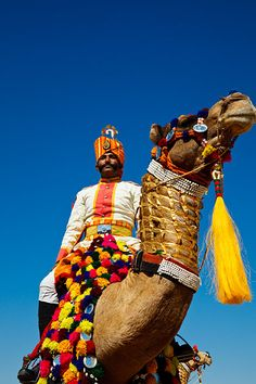 Men wearing ceremonial clothing and riding colourfully decorated camels during the annual Jaisalmer Desert Festival, a showcase of Rajasthani folk culture and arts / India