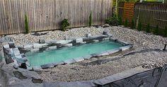 Familjen förvandlar deras lilla bakgård till en helt naturlig pool.