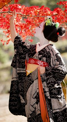 A trainee geisha (maiko) in Kyoto, Japan Yukata, Japanese Beauty, Asian Beauty, Katana Samurai, Look Kimono, Memoirs Of A Geisha, Art Asiatique, Turning Japanese, Geishas