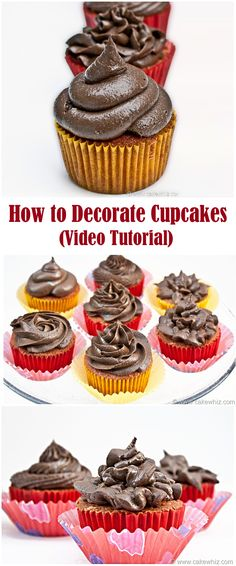 Learn to make beautiful cupcakes through this easy peezy video tutorial! From cakewhiz.com