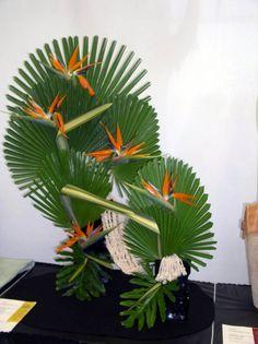 Florida Flowers and Gardens: Naples Flower Show. Bird of Paradise with fan palm. Tropical Flower Arrangements, Modern Floral Arrangements, Creative Flower Arrangements, Ikebana Flower Arrangement, Church Flower Arrangements, Church Flowers, Beautiful Flower Arrangements, Unique Flowers, Exotic Flowers