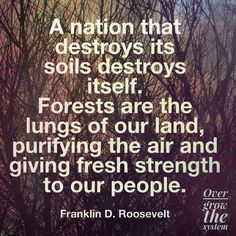 A nation that destroys its soils destroys itself ...