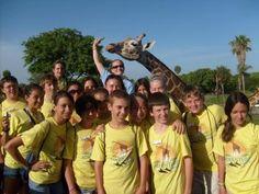 24 Best Fun In Florida Images Florida Florida Theme Parks