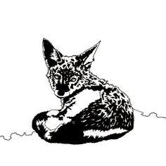Unsure Jackal. Letter J. #AwesomeA-Z #jackal #art #art🎨 #artstagram #newart #wildlife #wildlifeart #southafrica #animalart #artcommission #animals #nature #natureart #daily #dailyart #awesome #awareness #sammyjackles #awesomeanimalart