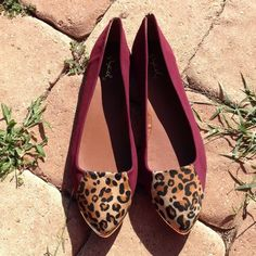 "Spotted while shopping on Poshmark: ""Maroon & Leopard Print Flats""! #poshmark #fashion #shopping #style #Qupid #Shoes"