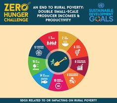 An End to Rural Poverty Face Wash, Infographic, Challenges, Holiday Destinations, Zero, Design, Sustainable Development, Food, Infographics