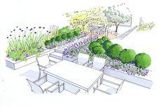 Introduction to Bea Ray Garden Design Ltd based in Oxford United Kingdom Landscape Sketch, Landscape Plans, Garden Design Plans, Garden Landscape Design, Plan Sketch, Planting Plan, Garden Drawing, Garden Illustration, Backyard Vegetable Gardens