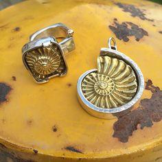 Ammonites, Robyn Cornelius, Little Rock Jewellery Studio