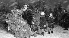 Joulukuusikauppaa lumisateessa 1950-luvulla. Copyright: Lehtikuva. Finland, Mount Rushmore, History, Nature, Vintage, Google, Art, Art Background, Historia