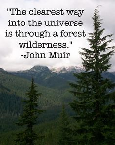 """""""The clearest way into the universe is through a forest wilderness."""" - John Muir"""