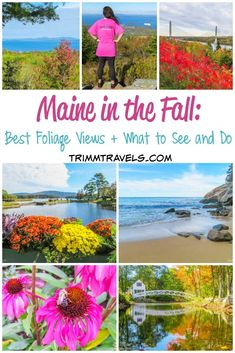 Looking to visit New England to see the fall foliage but don't know where or when to go? Maine in the fall is beautiful and this guide is your answer! Travel Tips Tips Travel Guide Hacks packing tour Travel Usa, Travel Tips, Travel Ideas, Travel Maine, Canada Travel, Travel Abroad, Travel Hacks, Travel Packing, Solo Travel