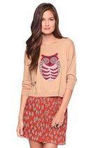 cozy owl sweater