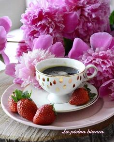 Kfcitooo...☕💋☕ Coffee Vs Tea, I Love Coffee, Coffee Cafe, Good Morning Coffee, Coffee Break, Turkish Tea, Tea And Books, Breakfast Tea, Tea Time
