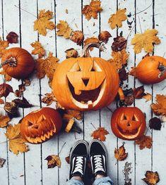 Image de autumn, pumpkin, and fall Halloween Pumpkins, Halloween Decorations, Fall Pumpkins, Halloween Traditions, Autumn Aesthetic, Autumn Cozy, Fall Winter, Autumn Photography, Halloween Photography