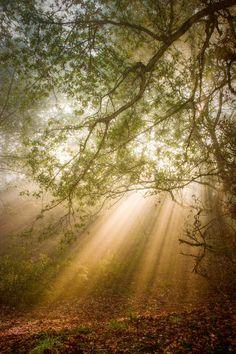 """Heaven's light is is always just a prayer away"""