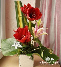 Composition florale de f te avec truffaut composition for Amaryllis fleuriste