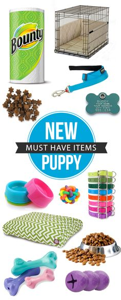 Must Have Items For A New Puppy #ad