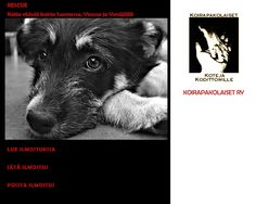 Koirapakolaiset ry Pet Organization, Volunteer Work, How To Raise Money, Rescue Dogs, Something To Do, Homes, Life, Animals, Houses