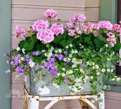 Pastel container gardening
