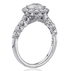 G52-RD100 Christopher Designs, July 9th, Our Wedding Day, Engagement Rings, Jewelry, Fashion, Enagement Rings, Moda, Wedding Rings