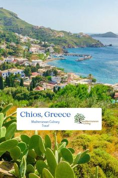 Deborah Christakos details a beautiful trip to Chios, Greece in the newest Mediterranean culinary travel article on Mediterranean Living. Learn about the mastic production, what to eat, where to eat, and places to stay on this gorgeous Greek island. Italy Vacation, Vacation Places, Places To Travel, Places To See, Honeymoon Destinations, Vacations, Chios Greece, Places Worth Visiting, Greece Travel
