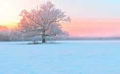 Image result for winter landscape photos free