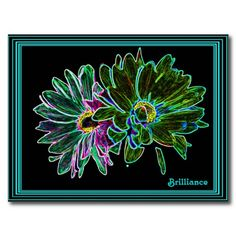 Brilliant Neon Daisy Postcard - Brilliantly colored digital photo of neon enhanced daisies. The main color is shades of green. There are a number of thin teal colored frames within a larger black frame, making a striking impression. With the title: Brilliance.
