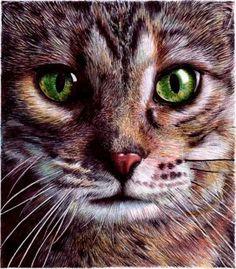 Cat Eyes - Bic Ballpoint Pen by VianaArts on deviantART
