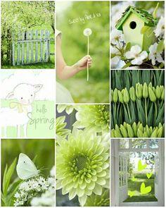 Subtle Greens of Spring