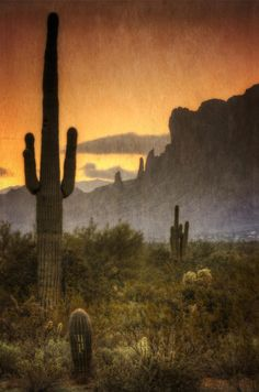 Southwestern Arizona, Superstition Mountains; photo by Saija Lehtonen
