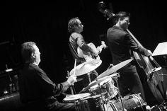 Asle Røe Trio Samba, My Music, Jazz, Album, Rock, Concert, Double Bass, Jazz Music, Recital