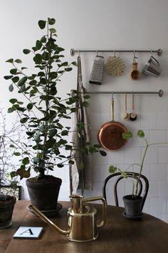 Greens & watering can. Foto: Johanna Bradford
