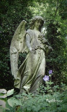 You know what? When I have a garden again I'm gonna make Weeping Angels out of hypertufa in different positions and switch them out with one another once in a while. My friends will shit their pants.