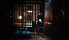 Trailers, promos, featurettes, images and posters for DC Universe's series TITANS starring Brenton Thwaites. Beast Boy, What Makes A Hero, Jenji Kohan, Logan, Ryan Potter, Bad Film, Doom Patrol, Teen Titans, Ravenna